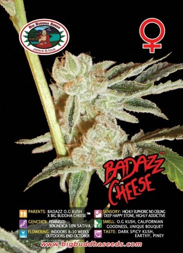 Big Buddha Seeds - Badazz Cheese NEW