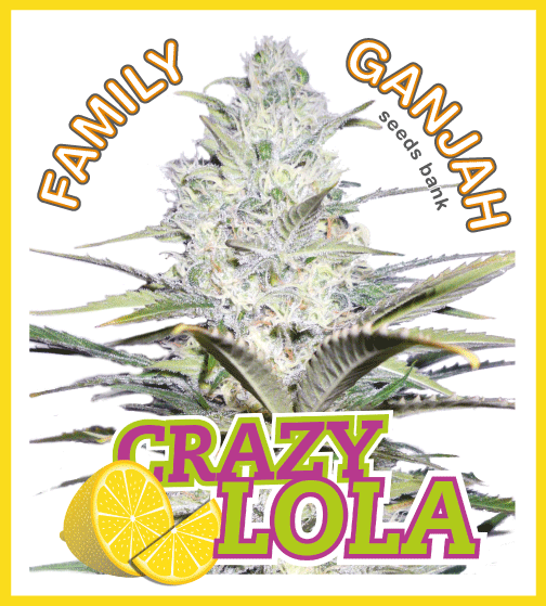Family Ganjah - Crazy Lola