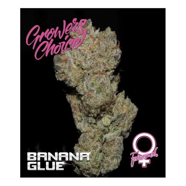 Growers Choice - Banana Glue
