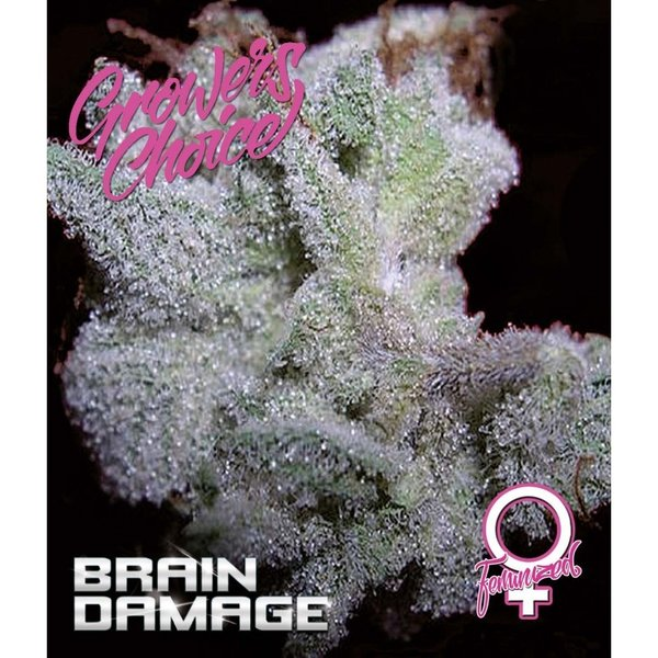 Growers Choice - Brain Damage