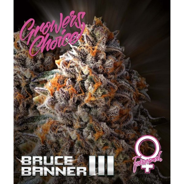 Growers Choice - Bruce Banner 3