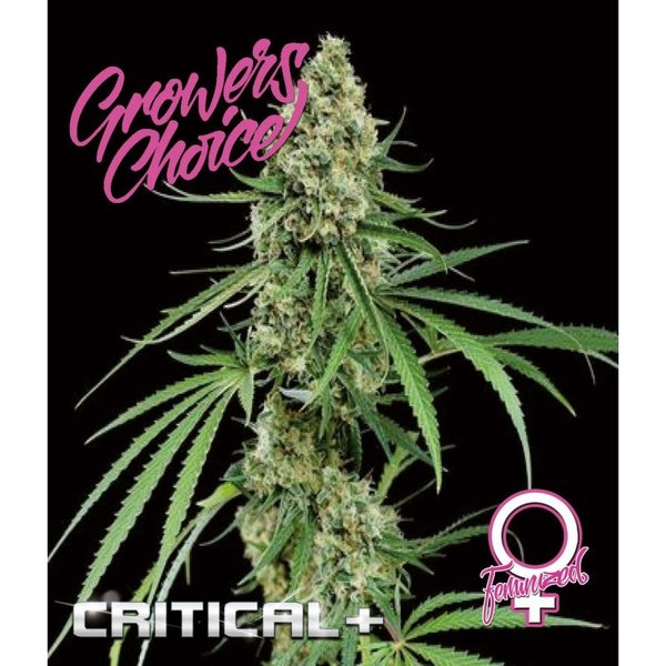 Growers Choice - Critical +